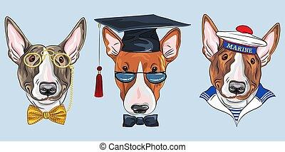 Set Bullterrier dogs - Set of Bullterrier dogs, graduated ...