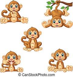 set, cartone animato, collezione, scimmia