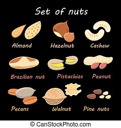 set collection of various nuts