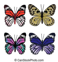 Set Colorful butterflies isolated on white background. Vector illustration.
