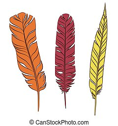 Set colorful feathers on a white background.