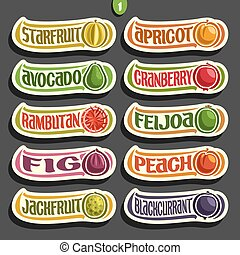 set, colorito, etichette, vettore, frutte, bacche
