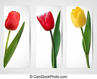 set, colorito, flower., vettore, bandiere, illustration.