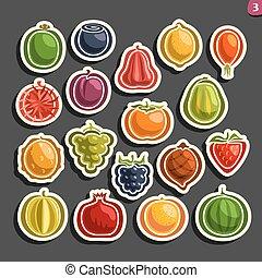 set, colorito, icone, vettore, frutte, bacche