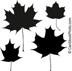 set, contorno, foglie, vettore, nero, acero