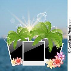 set, cornice foto, sfocato, fiori, palme, marina, backgro