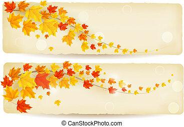 set, di, autunno, bandiere, con, colorito