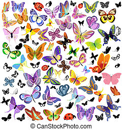 set, di, coccinella, e, farfalla