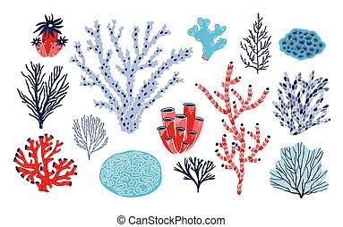 Subacqueo Alghe Colorito Isolato Coralli Alga Vettore Fauna