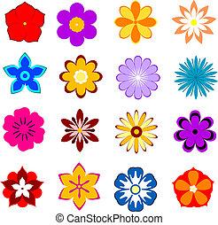 set, di, fiore, fiori, e, petali