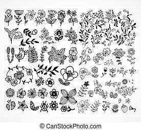 set, di, nero, fiore, disegni elementi