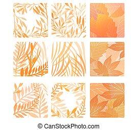 set, di, quadrato, forme, con, autunno parte, e, herbs., vettore, disegno, elements.