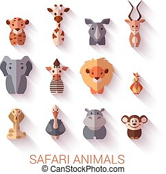 set, di, safari, animals., appartamento, style.