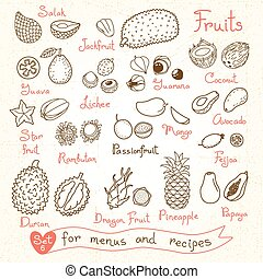 Set drawings of fruit for design menus, recipes and packages...