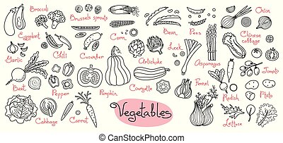 Set drawings of vegetables for design menus, recipes and...