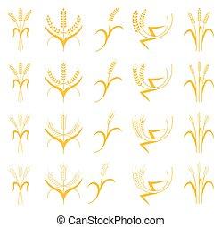 Set Ears of Wheat, Barley or Rye