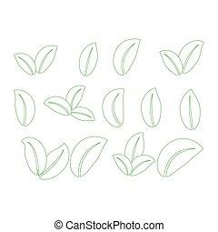 set, elements., germoglio, foglie, simbolo, verde, disegno, set., icona