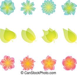 set, elements., ontwerp, floral