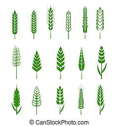 set, elements., organisch, iconen, groene, themed, boer vers, bakkerij, boon, bier, bier, voedingsmiddelen, boon, eenvoudig, illustratie, vector, alhier, communie, ontwerp, wheats, tarwe, eps10, oor, ontwerp