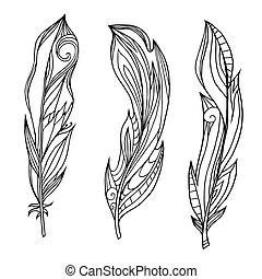 set, elements., pattern., doodle, van een stam, veertjes, hand, boho, vector, creativity., getrokken, element, jouw