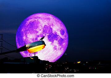 set, energia elettrica, luce, colonna, su, mano, pieno, fondo, luna, uccello, strada