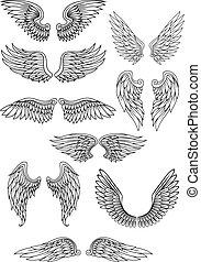 set, engel, heraldisch, of, vogel, vleugels