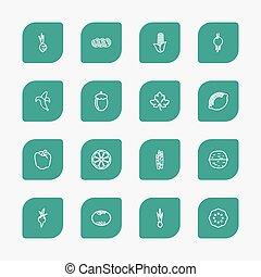 set, essere, affettato, infographic, design., agrume, usato, mobile, editable, icons., include, web, tale, more., utensili cucina, aglio, pomodoro, simboli, contorno, 16, ui, lattina