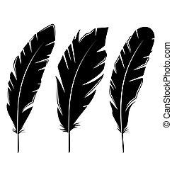 Set feathers isolated on white background