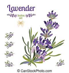 Set festive border and elements with Lavender flowers for greeting card. Botanical illustration.