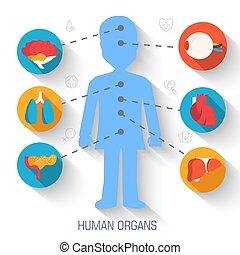 set flat human organs icons illustration infographic concept. Vector background design. Template for website and mobile appliance