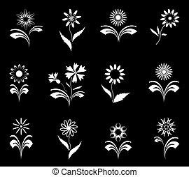 set., flores