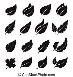 set, foglie, vettore, fondo, bianco, icona