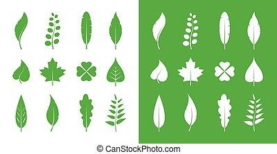 set, foglie, vettore, sfondo verde, bianco, icona