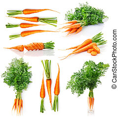 set fresh carrot fruits with green leaves isolated on white ...