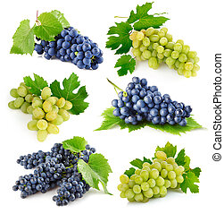 set fresh grape fruits with green leaves