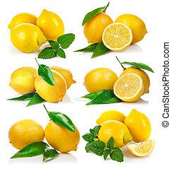 Set fresh lemon with green leaf mint