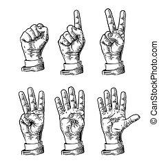 set, gesti, zero, cinque, mani, conteggio