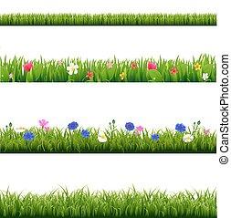set, grande, erba, verde, primavera, profili di fodera, fiori