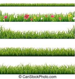 set, groot, bloemen, groene, randjes, gras