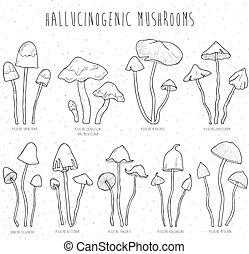 Set hallucinogenic mushrooms. - Collection isolated elements...