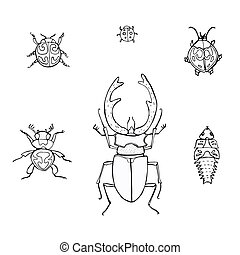 set hand-drawn doodle insects
