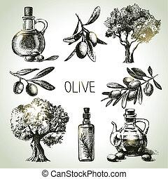 set, hand, getrokken, olive