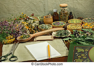 Dried herbs for use in alternative medicine - Set healing...