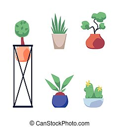Set house pot plants colorful cartoon icons, flat vector illustration isolated.