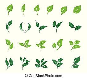 set., icône, feuilles, écologie, vecteur