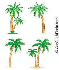 set, icone, albero, illustrazione, tropicale, vettore, palma