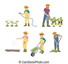 set, icone, illustrazione, vettore, lattina, agricoltura, uomo