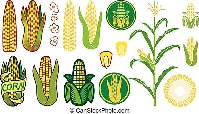 set, iconen, koren, zaad, (grain, vector, steel, popcorn, corncob), of