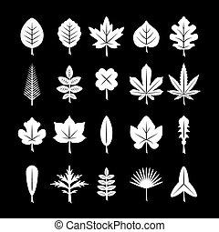 Set icons of leaf