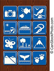 Set icons of photography, aquarium, bird watching, beach, navigable river, serpentarium, butterfly garden, forest, volcano, whale watching, zoo. Icons in blue color on wooden background. Vector image